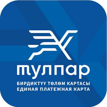 Мобильное приложение Тулпар для Android